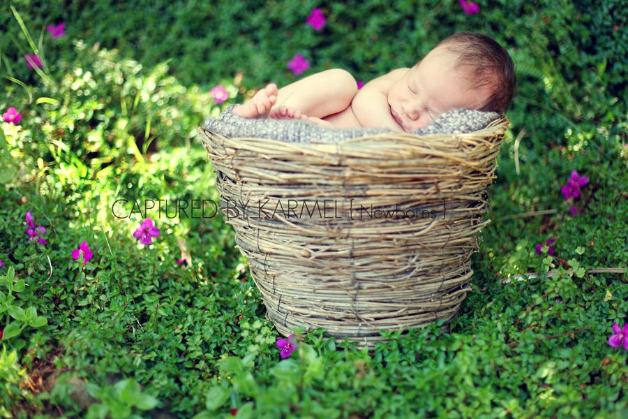 professional newborn photographer sydney nsw