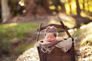 outdoor newborn photography central coast nsw – captured by karmel