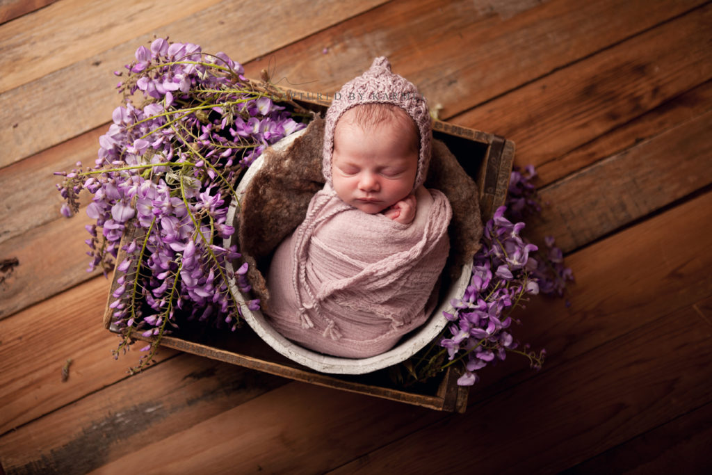 photography baby sydney