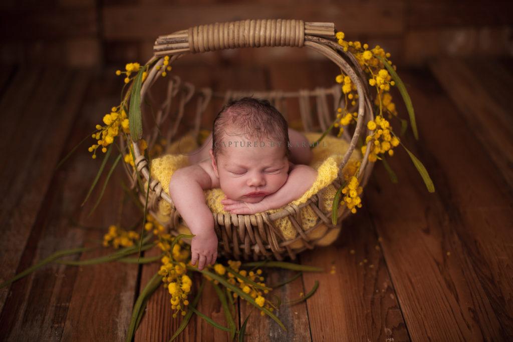 baby newborn photo yellow flowers