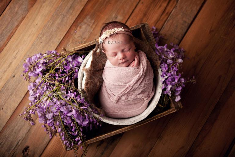 newborn portrait purple flowers